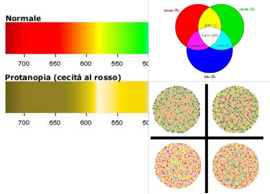 daltonismo ottica firenze lenti rainbow - presbiopia - occhiali da sole
